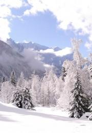 горнолыжный курорт Аржантьер