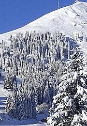горнолыжный курорт Хопфгартен