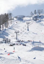 горнолыжный курорт Бобровый Лог