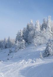 горнолыжный курорт Гора Белая