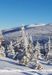 отдых на курорте Шпиндлерув Млын – Горни Мисечки